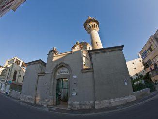 Marea Mosche Carol I